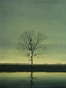 Solitary Tree Against A Grey Sky - 48x36