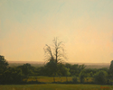 BB1639 - Barren Oak with Vista - 32x40
