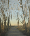 BB1404 - Illuminated Grove-Wooded Lane - 48x40