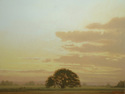Silhouetted Oak - Early Evenong 36x48