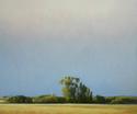 BB1407 - Sun-drenched - 42x72